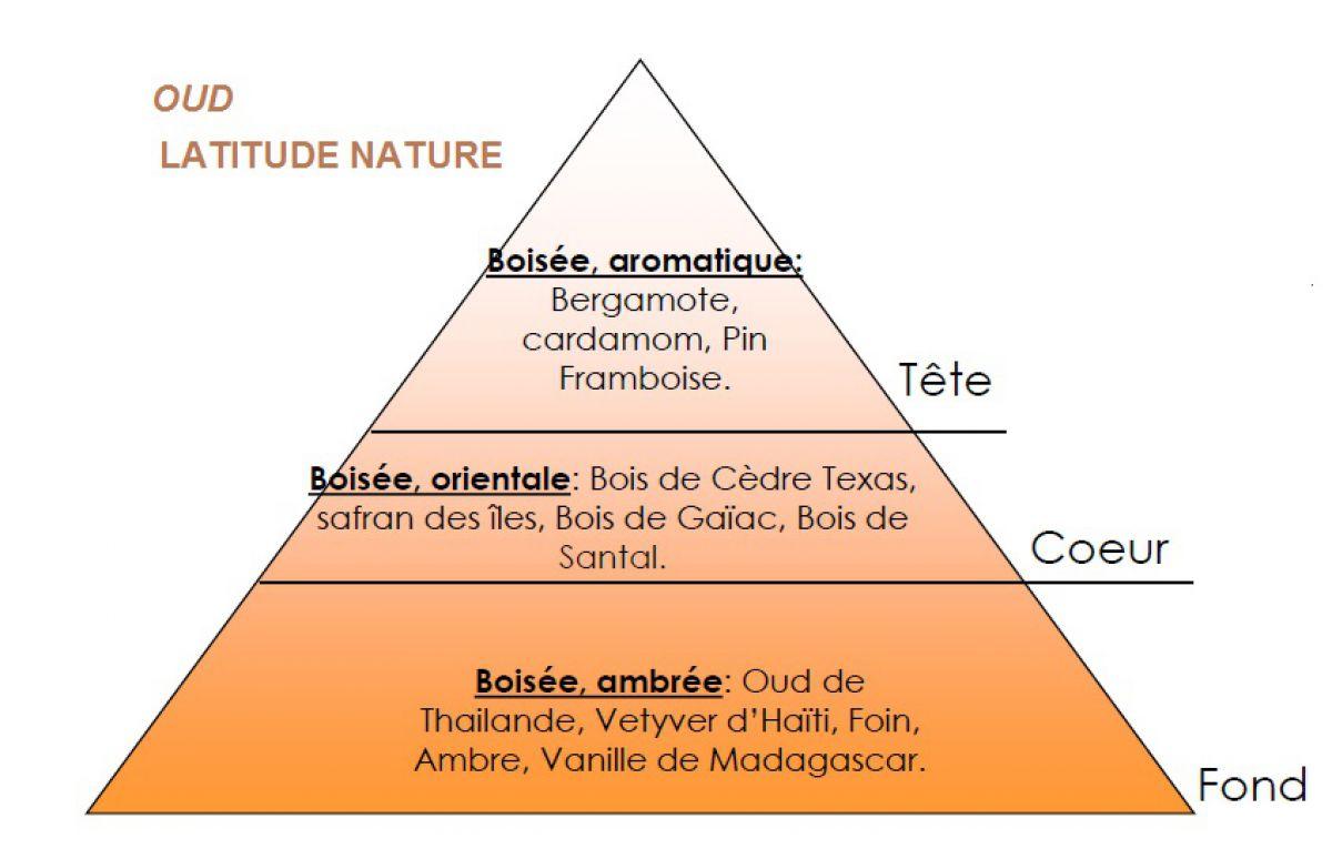 pyramide olfactive parfum bougie oud
