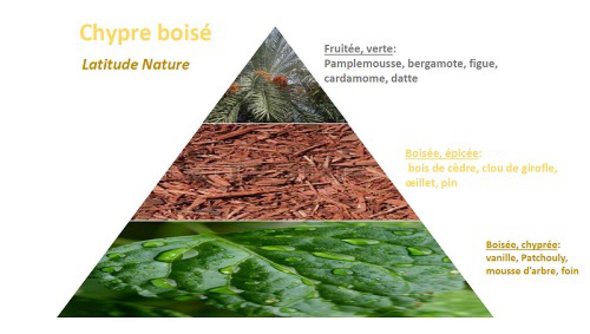 pyramide olfactive chypre boisé