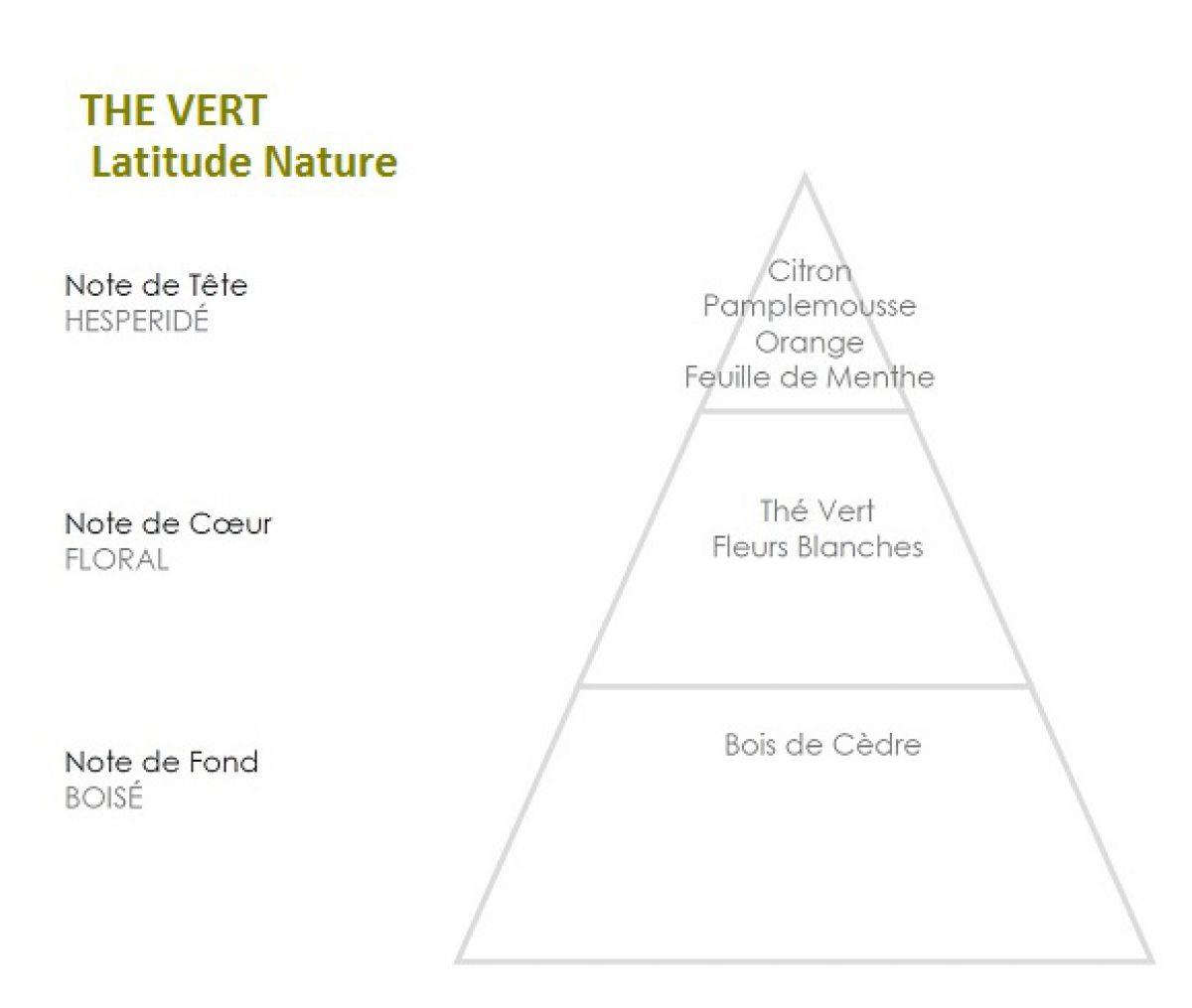 pyramide olfactive parfum bougie the vert