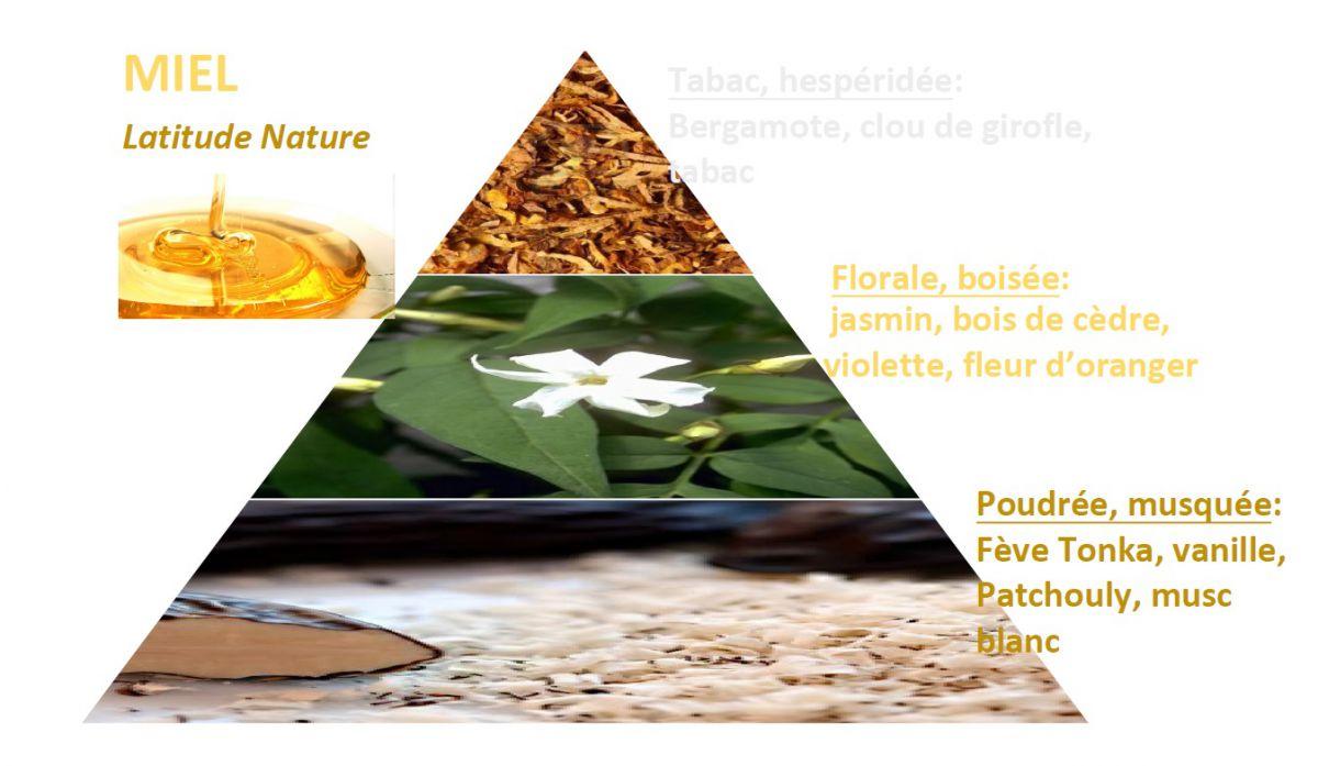 pyramide olfactive miel