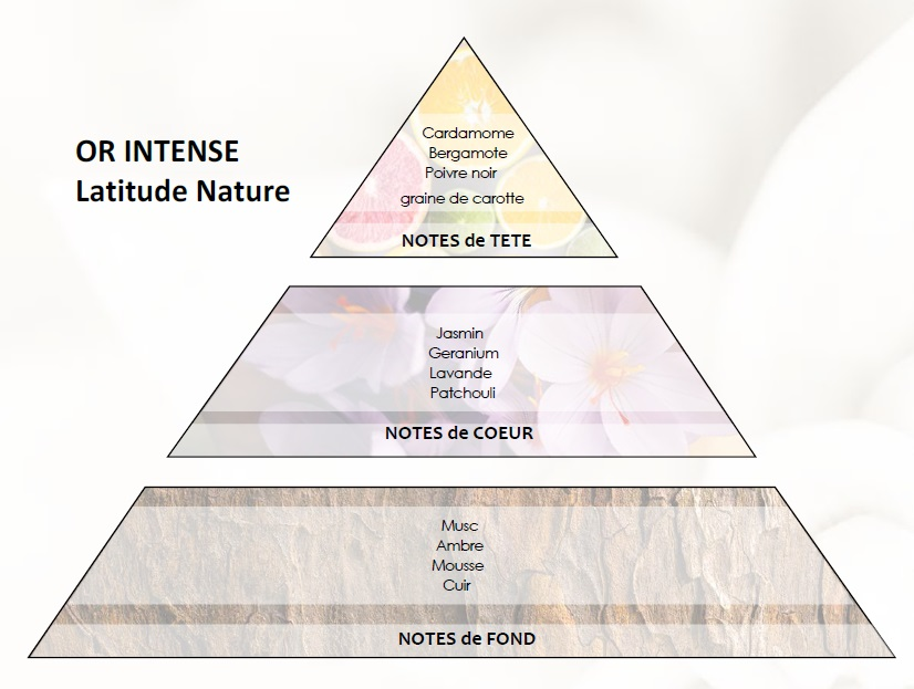 pyramide olfactive or intense