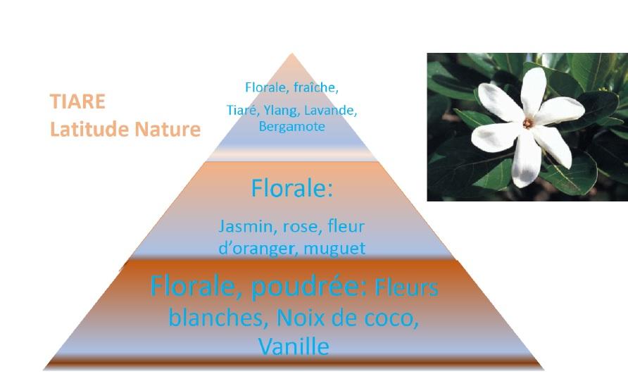 pyramide olfactive tiare
