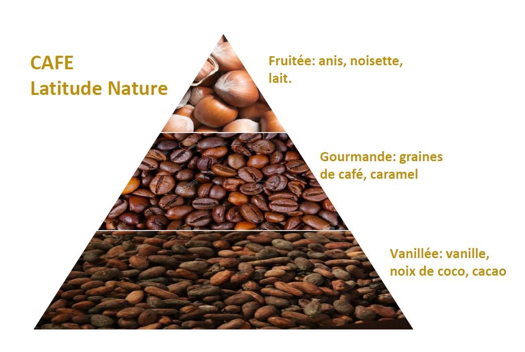 pyramide olfactive parfum bougie cafe