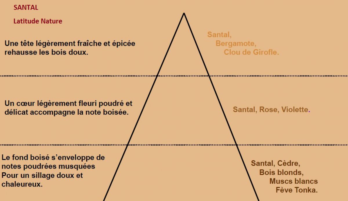 pyramide olfactive parfum bougie santal